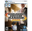 Picture of World Wide Soccer Manager 2009